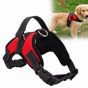 https://www.cheapchinesestore.com.au/wp-content/uploads/2018/01/Adjustable-Pet-Puppy-Large-Dog-Harness-for-Small-Medium-Large-Dogs-Animals-Pet-Walking-Hand-Strap.jpg_640x640.jpg